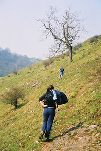 There's a path by the river through Dovedale, but we chose the more interesting high route.