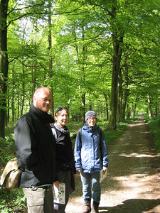 In the woods behind Chatsworth house. These woods were once the edge of Sherwood forest.