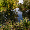Autumn colour reflected in a pond