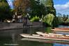 131 River Cam Quayside near Jesus Green