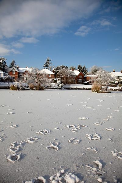 Snow in Sussex