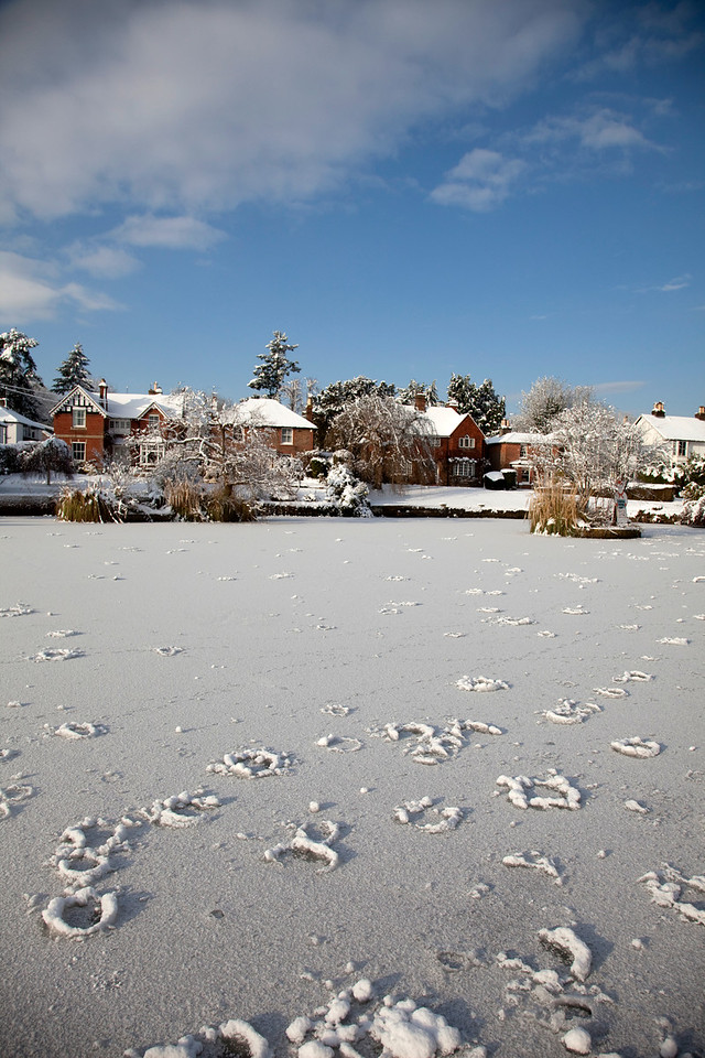 Snow in Sussex