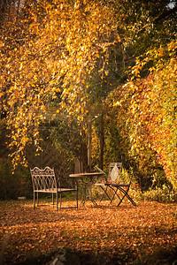 Autumn in a Sussex garden