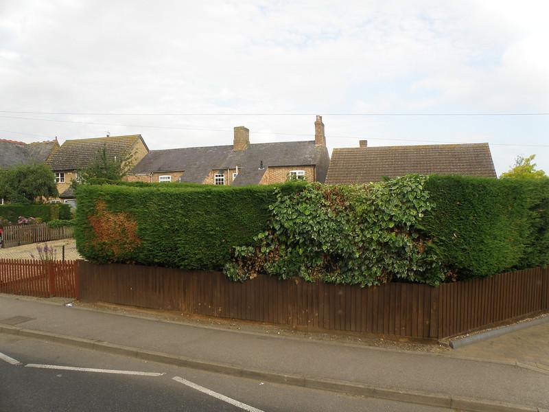 Non-uniform hedges!