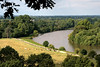 View of River Thams from Richmond hill