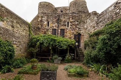In The Medieval Garden
