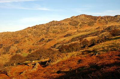 Snowdonia (2008)
