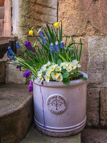 Heritage Garden Pottery