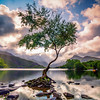 Llyn Padarn View