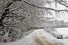 Snow 037
