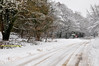 Snow 041