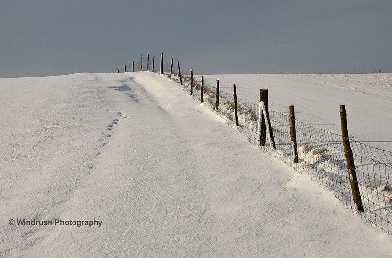 Snow 025