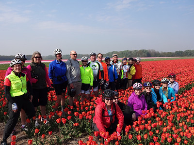 UNESCO Bike and Barge Tour of Holland: Days 1-2 Haarlem, Keukenhof Gardens, and on to Leiden...April 19-20, 2014