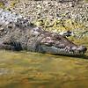 United States of America, Everglades National Park