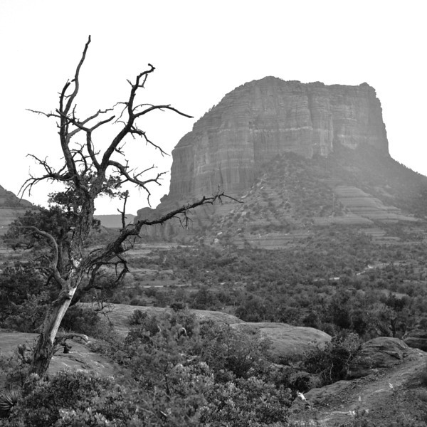 Sedona Sunrise<br /> <br /> (May 2012)