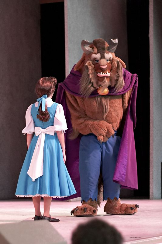 The Beauty and the Beast stage show