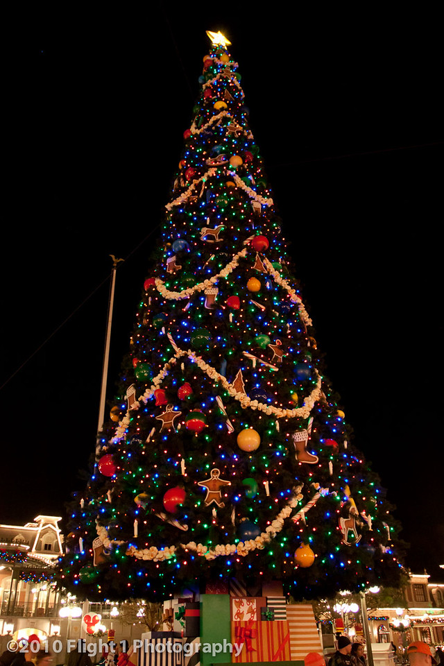 Holiday Tree at the Magic Kingdom