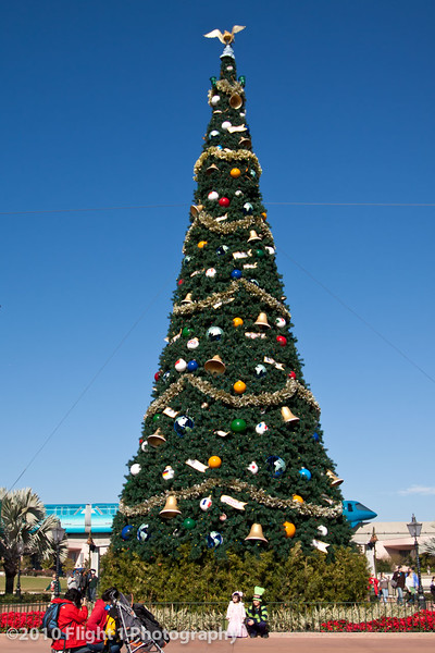 Epcot Holiday Tree