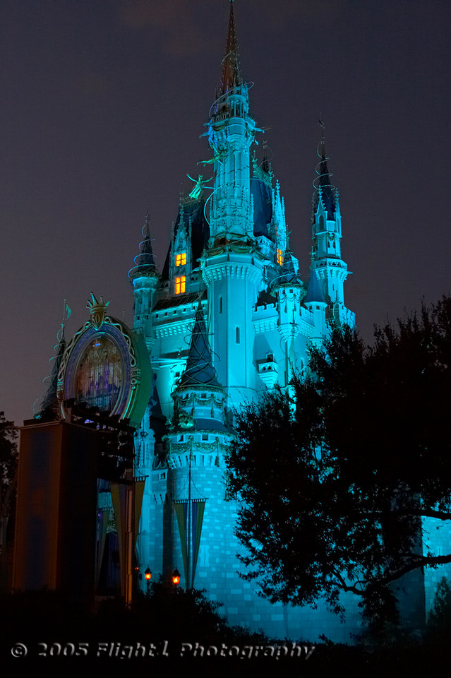 Another view of the Castle at night