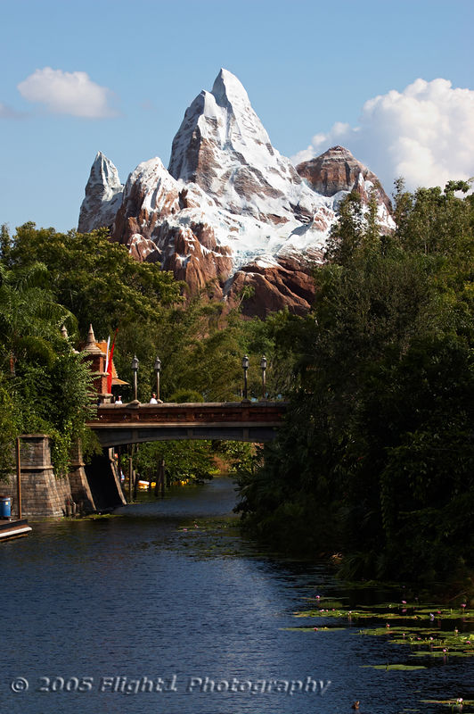 A new ride - Expedition Everest will open in 2006