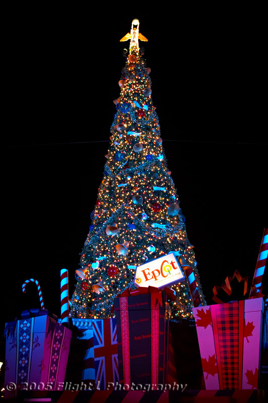 The Epcot Christmas Tree