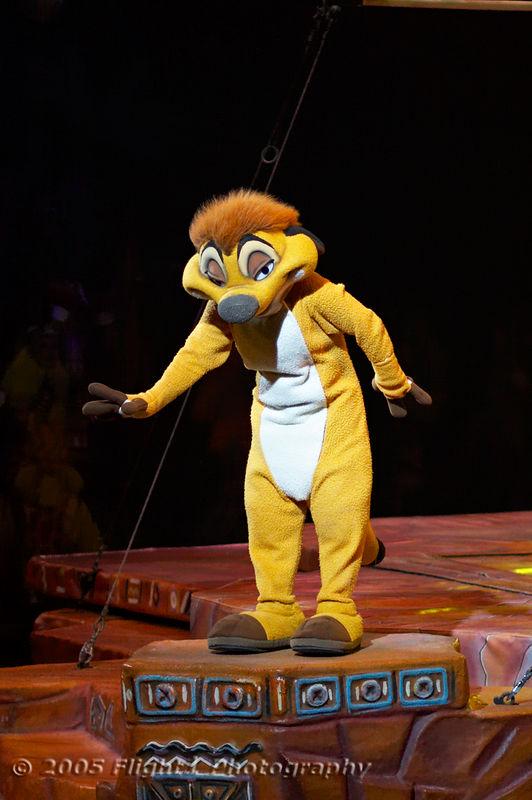 Timon, the Meerkat