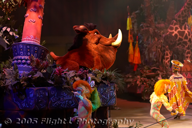 Pumbaa, the Warthog