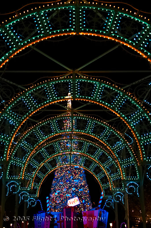 Tunnel of lights at the Epcot Tree