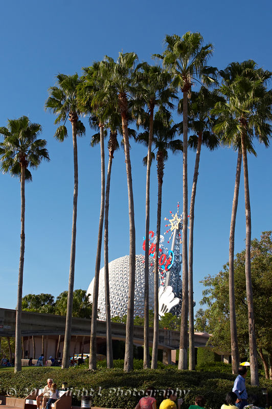Giant Palms and Spaceship Earth