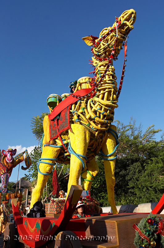 A unique float for Animal Kingdom