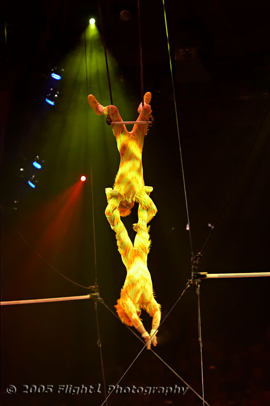 "Acrobats pose as ""Monkeys"""