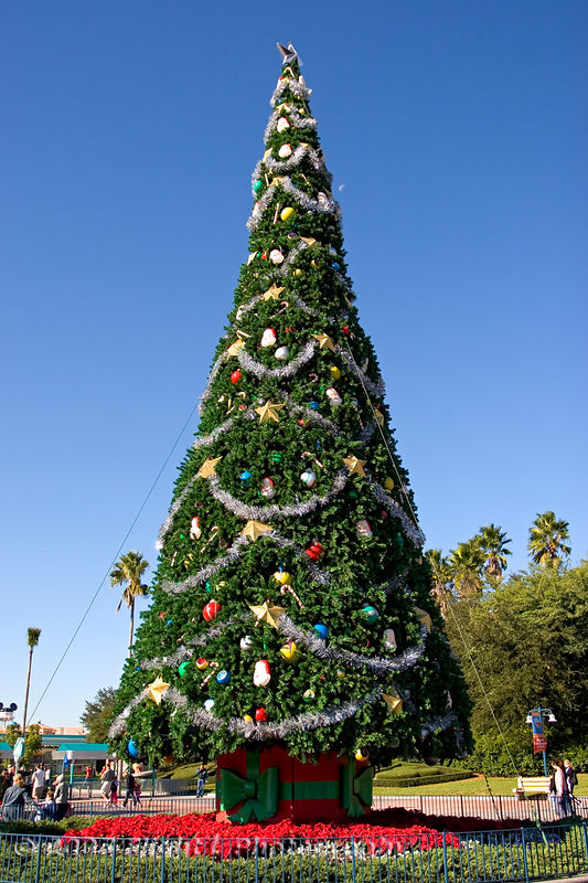 Disney/MGM Studios Christmas Tree