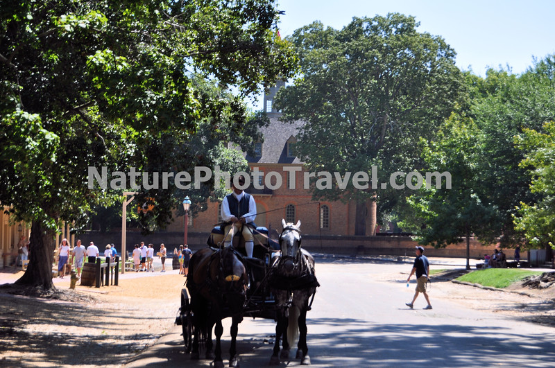 Colonial Williamsburg: Horse & Carriage near Capitol.