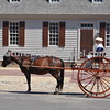 Colonial Williamsburg Horse & Carriage