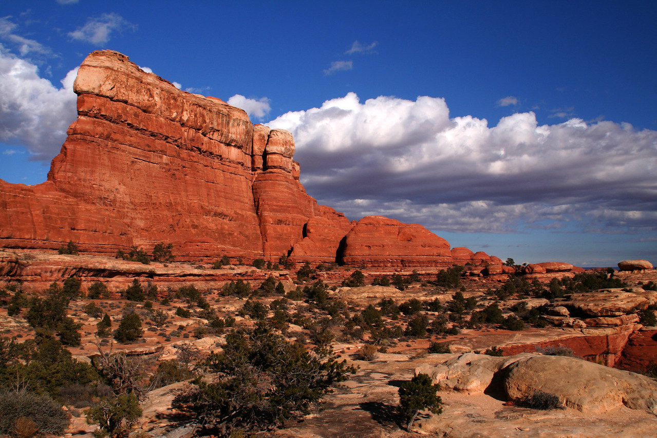 The Needles area of Canyonland.