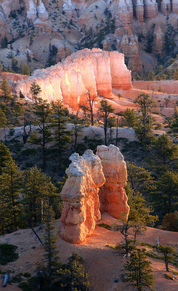 "Bryce is famous for its worldly unique geology, consisting of a series of horseshoe-shaped amphitheaters carved from the eastern edge of the Paunsaugunt Plateau in southern Utah. The erosional force of frost-wedging and the dissolving power of rainwater have shaped the colorful limestone rock of the Claron Formation into bizarre shapes including spires called ""hoodoos"" ..."