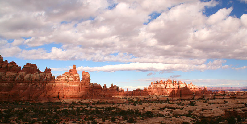 Sandstone spires in Elephant Canyon