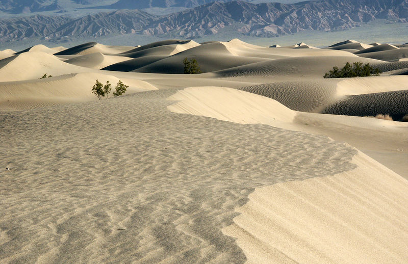 Most people think sand dunes are common in the desert. They aren't. There are two interesting areas of sand dunes in Death Valley. The largest is Eureka Dunes, accessible only to adventurous backcountry folks. This smaller set of dunes near Stovepipe Wells is still quite impressive.