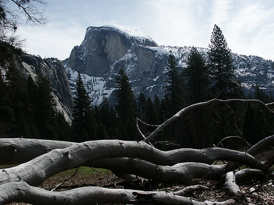 March 2005: Half Dome. View from valley floor.