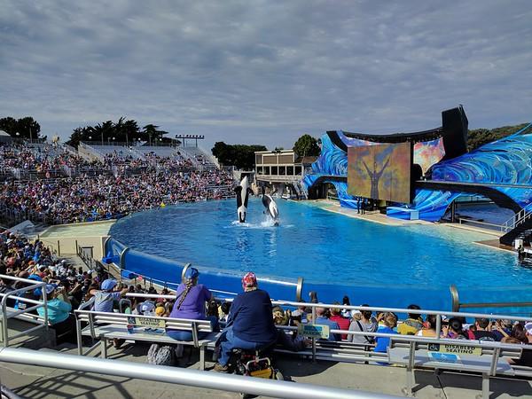 2016-10-28 SeaWorld