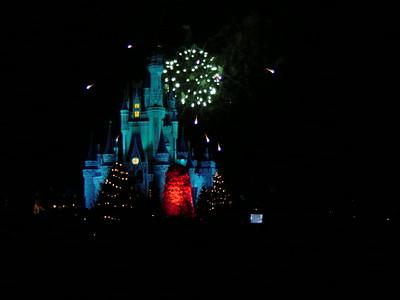 2003-12 Magic Kingdom