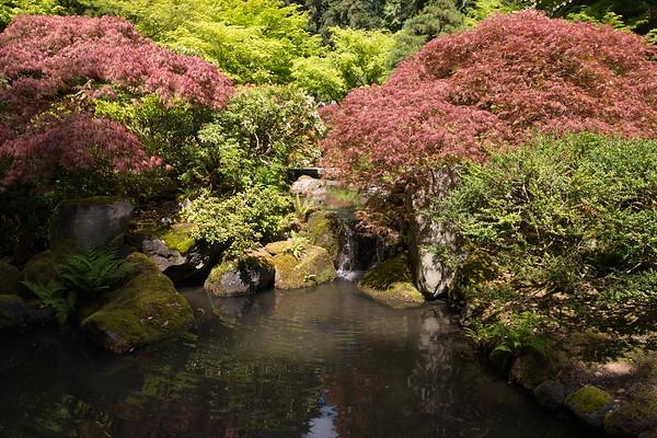 2014-04 Portland Japanese Garden