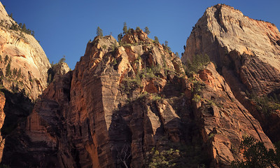 On the trail to Weeping Rock, Zion NP