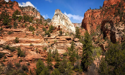 Along the east road into Zion NP