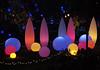 Phipps Conservatory, Winger Light Festival, January