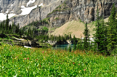 Little Iceberg Lake - surrounded by an alpine meadow.