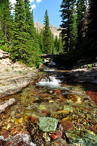 Crystal Clear waters of the Ptarmigan Creek Iceberg Lake Trail.