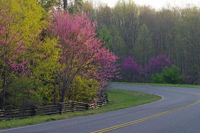 Natchez Parkway, Tennessee