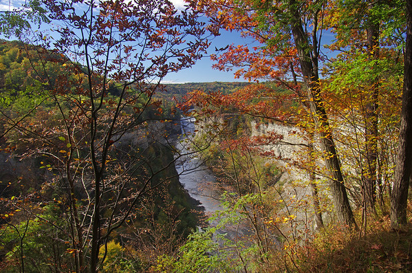Letchworth State Park and Vicinity, October 2013