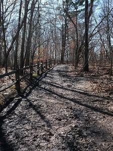 A very muddy Alewife Trail.